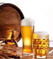 Enzyme cho nhà máy bia